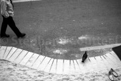 les habitués de Paris plage