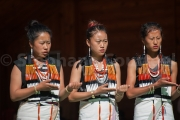 Angami indigenous games - Hornbill festival Nagaland -Inde