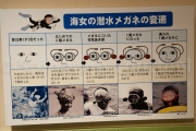 Bas les masques - Toba sea folk museum