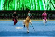 demonstration de tai chi - Chenjiagou - Chine