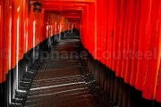 Vertige au Fushimi inari taisha - Japon