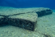 Tortue  - Ruines sous marines de Yonaguni - Okinawa
