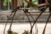 Fruits en attente de porteur - Vietnam - Ninh Binh