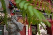 Chenjiagou - Chine